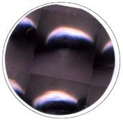 Adhesif-LAMBADA-anthracite-40-933-61
