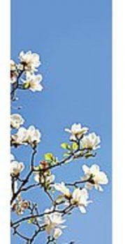 Bandeau-papier-MAGNOLIA-53612700