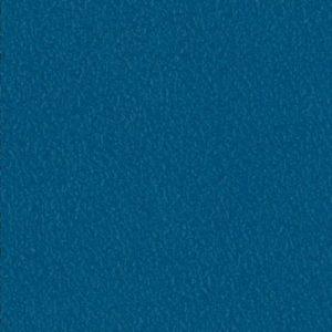 EXPOTOP-BLEU-ROI-5660772