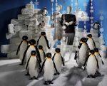 Idée déco Pingouins