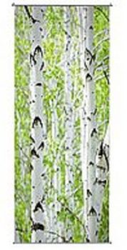 Banniere-textile-BOULEAU-55999700