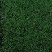 Gazon-VALLEE-321614