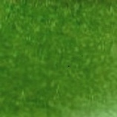 moquette-velours-39631-vert-automne