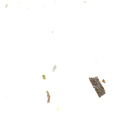 Non-tisse-STROHLAME-501-ecru