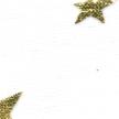 STAR-NIGHT-303-BLANC-ETOILES-OR (2)