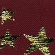 STAR-NIGHT-476-BORDEAUX-ETOILES-OR (2)