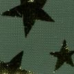 STAR-NIGHT-674-VERT-ETOILES-OR (2)