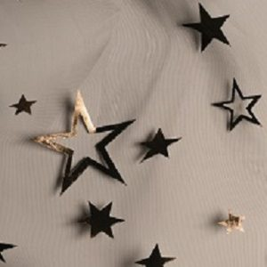 Star Voile 77570BXR05- Gris
