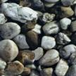 tissu-rocks-77170dgd